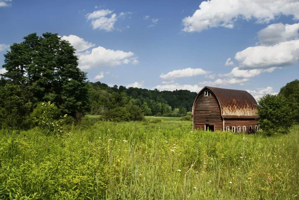 free stock photo of a field, trees and an old barn