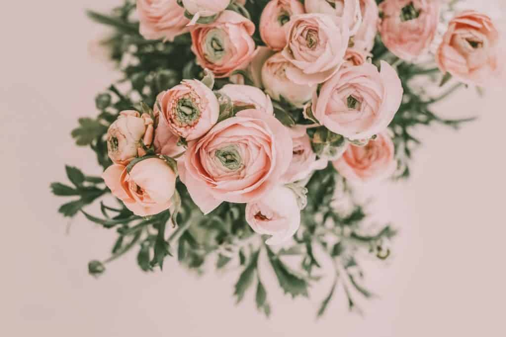 stock photo of a bouquet of pink roses
