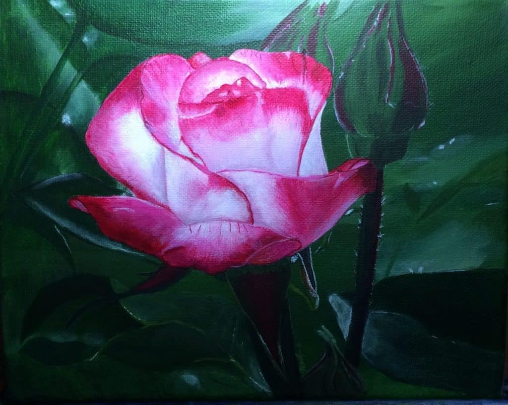 painting of a pink rose on a green leafy background