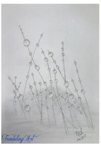 pencil drawing of dewdrops on grass
