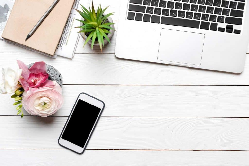 computer, iPhone and succulent