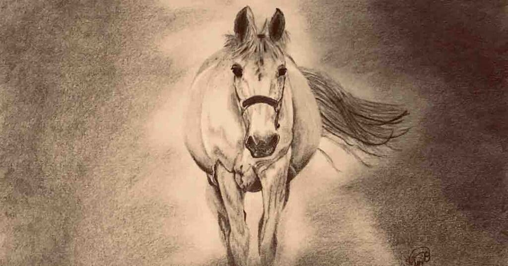 graphite drawing of a white horse running towards the viewer